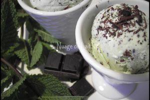 Glace à la Menthe et Copeaux de Chocolat
