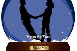 Romantique à souhait la boule de neige : créez la votre et shake it