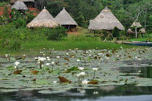 Tourisme au Panama, circuit d'une semaine - (3) Une journée chez les Amérindiens Emberas