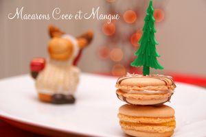 Macarons mangue et macarons coco