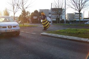 ERIC-C en ABEILLE pour BEE MOVIE (PHOTOS -  16 DECEMBRE 2007 A DINAN)