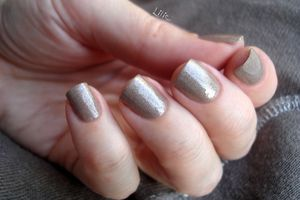 """Orly - Nite Owl - Collection """"Birds of a Feather"""""""