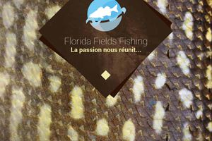 Catalogue Florida Fields Fishing 2015 (FR).