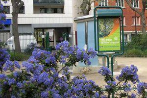 Fête des jardins à La Chapelle : 25 et 26 septembre 2010