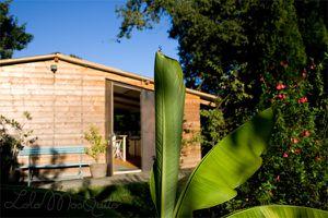 L'atelier LoloMosquito : visite guidée