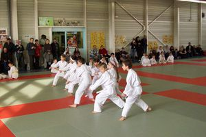 Le KIHON dans la pratique du KARATE-DO SHOTOKAI