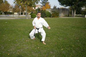 Généralités et analyses des postures ou positions de Karaté-do shotokai