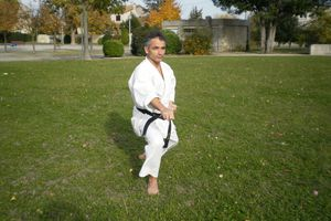 information KARATE DO SHOTOKAI sur la saison 2012/ 2013