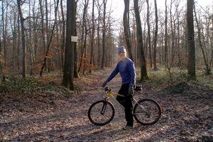 La forêt de Fontainebleau givrée