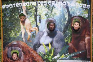 La sortie au zoo des CM2
