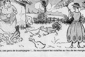 TORTUES : IL Y A URGENCE !