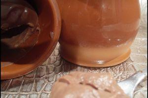 Crème dessert au chocolat comme une Danette