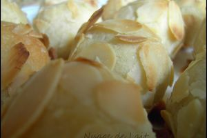 Biscuits Moelleux Siciliens aux Griottes