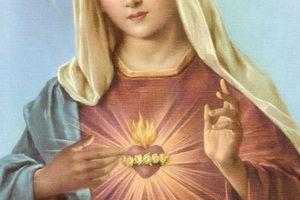 Prière de Consécration des familles et foyers au Coeur Immaculé de Marie - Notre Dame à Enoc - 04 Février 2014