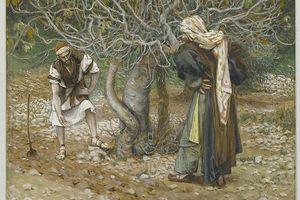 """Jn 1, 45-51 La vocation de Nathanaël, un """"Israélite sans détour"""""""