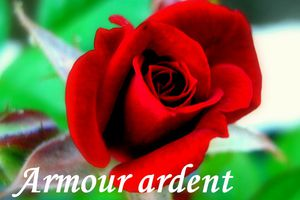 L'amour ardent