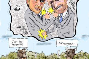 UMP : Le mythe du sauvage.