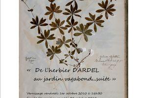 """"""" De l'herbier DARDEL au jardin vagabond...suite"""""""