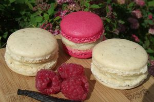 "Index ""Macarons"""