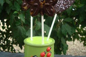 Sucettes au chocolat noir et abricots secs pour faire plaisir aux petits bouts