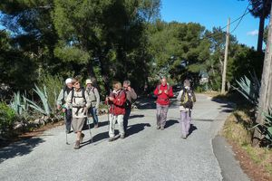 Tour du mont Faron - 28 avril 2014