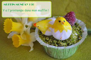 Help... Muffin monday#30