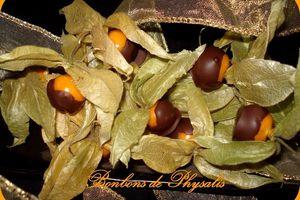 Bonbons de Physalis