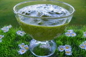 PESTO (thermomix)