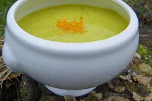 VELOUTE COURGETTE - ORANGE