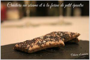 Crackers aux graines de pavot et à la farine de petit épautre