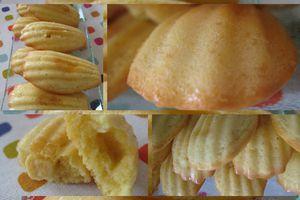 Les madeleines au chocolat blanc d'Eglantine