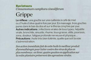 huile essentielle ravintsara (grippe)