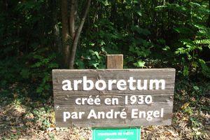 Arboretum de Ripaille à Thonon les Bains en hte savoie