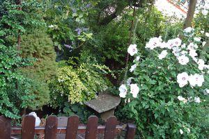 le clos fleuri en juillet 2011