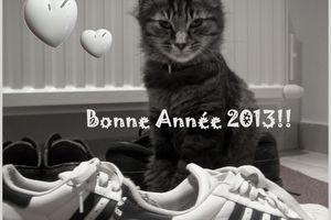 ♥ Bonne Année 2013! ♥