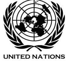 L'annexe du rapport des Experts de l'ONU sur la RDC/Rwanda