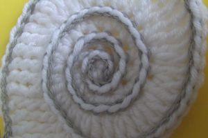 Freebeanie : spirale ammonite