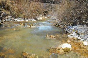 Pas de ruisseaux , mais deux belles rivières .....