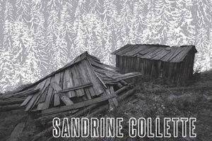 """""""Des noeuds d'acier"""", de Sandrine Collette"""