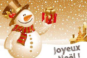 Merry Christmas .... Bûche au chocolat et clémentine !!!