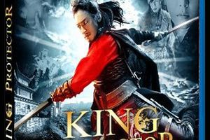 King protector (BANDE ANNONCE VOST 2008) en DVD et BLU-RAY le 08 08 2012 (Ssang-hwa-jeom) (A Frozen Flower)