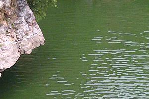 พัทยา - นวดแผนไทยสีขาวนิพพาน Parlore นวด