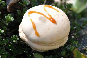 Macaron caramel beurre salé