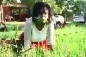 Dérive ou pratique divine ? Un Pasteur fait brouter de l'herbe à ses fidèles !