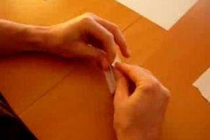 Vidéos explicatives graines germées