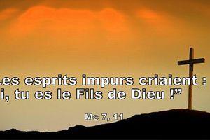 """Mc 3.7-11  Les esprits impurs criaient : """"Toi, tu es le Fils de Dieu !"""""""