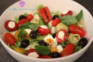 Salade Grecque Anti Pasti