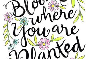 Bloom Where You Are