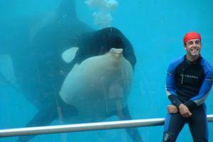 N'accompagnez vos enfants au SeaWorld d'aucun pays