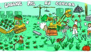 Dijon : Une occupation maraîchère contre la future rénovation urbaine
